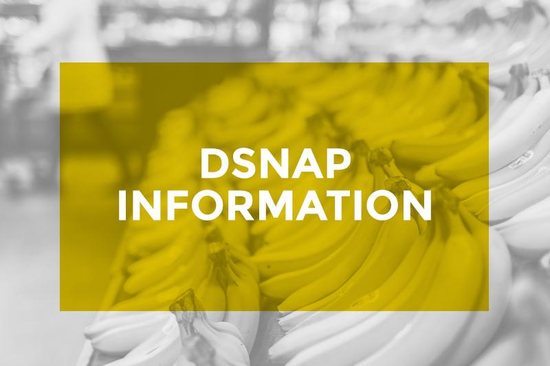 dsnap_header